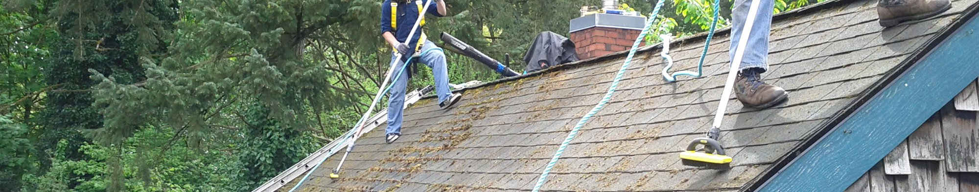 Roof Cleaners Ipswich